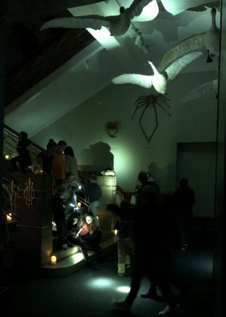 Visitors in the dark room with flashlights